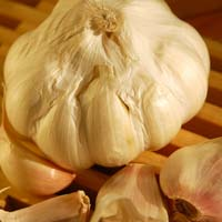 Garlic A Powerful Liver Diet Food
